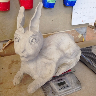 rabbit7